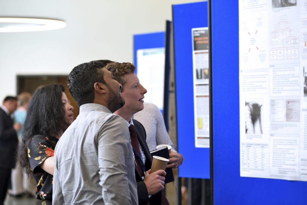 Delegates discuss the research posters on show.